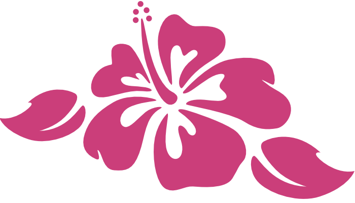 Hibiscus Flower Wall Decal  sc 1 st  Stickers Stickers & Hibiscus Flower Wall Decal - StickersStickers